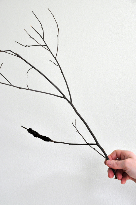 If it catches your eye when branches are bare and you aren't sure if it's normal or trouble, snap its picture and show it around.