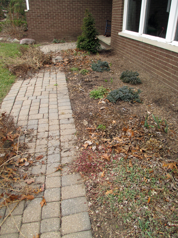 Next, we remove the cut debris from the garden, then spread a slow release organic fertilizer.