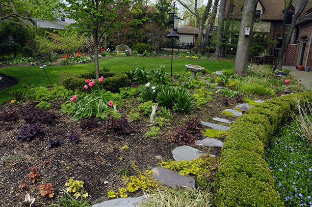 Where bulbs are doubled up with perennials in a garden the effect is color in splashes, not solid masses.