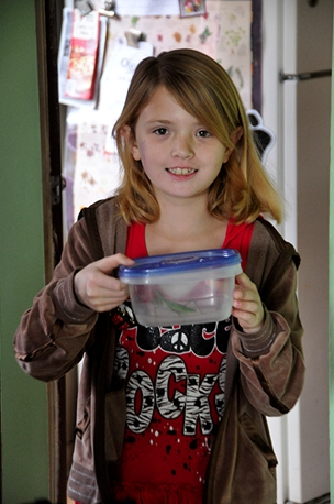 Maybe you don't think much of a gift preying mantis, but our young friend Sarah was thrilled at the offer. We knew she would be enthused because we knew we wanted it!